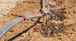 irrigador ajuda a economizar água
